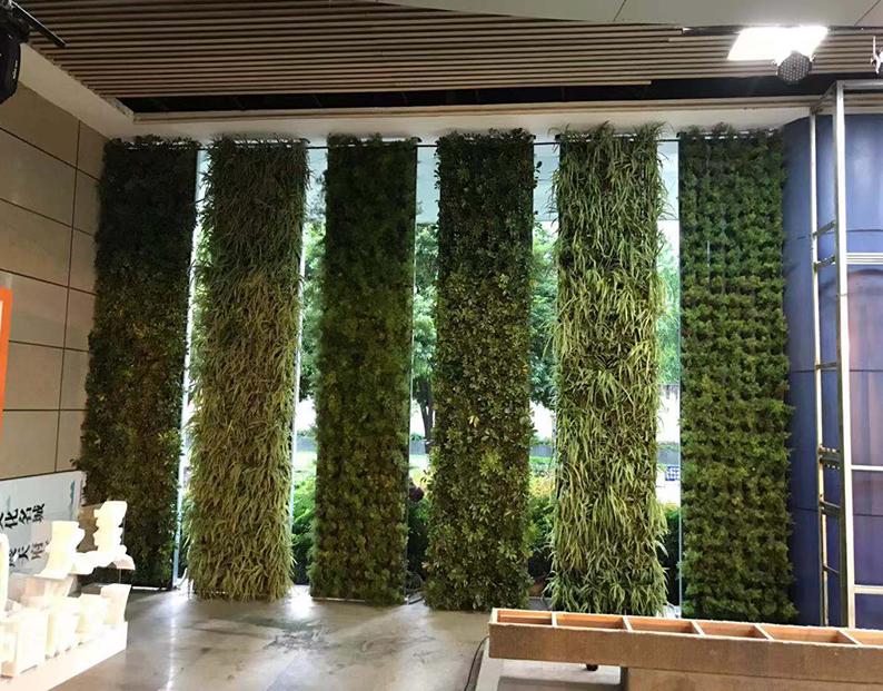成都市文化宫绿植墙