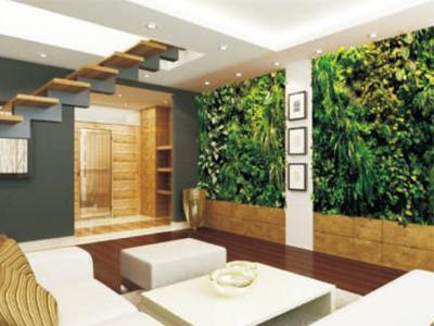成都垂直绿化