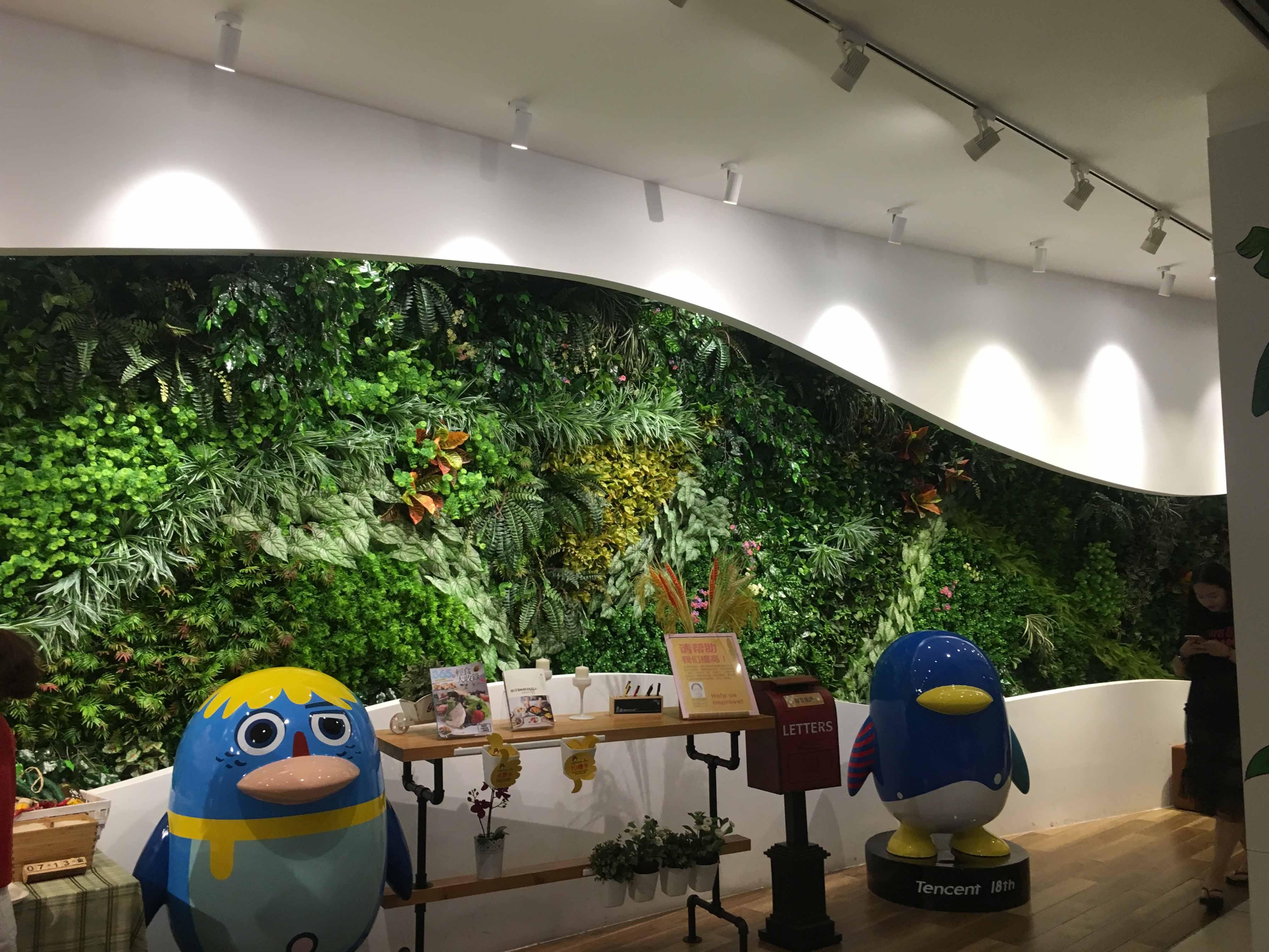 四川植物墙公司