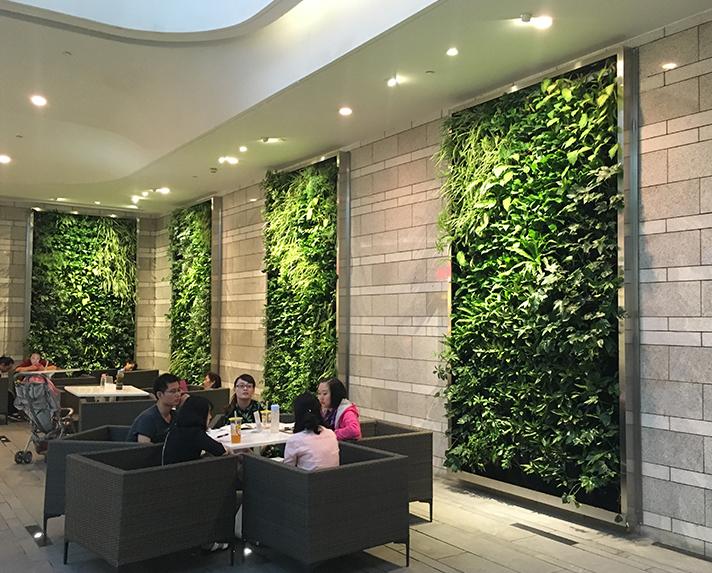 IFS 负一楼植物墙