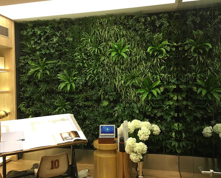 世豪金河谷植物墙