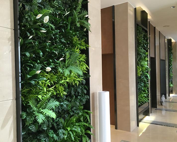 朗诗绿色街区垂直绿化