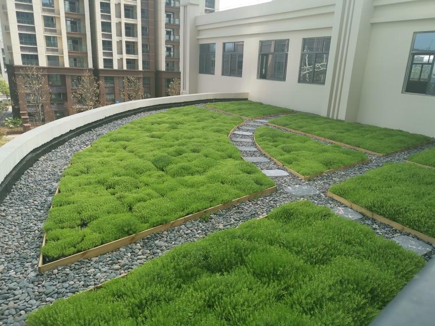 成都屋顶绿化应注意的问题