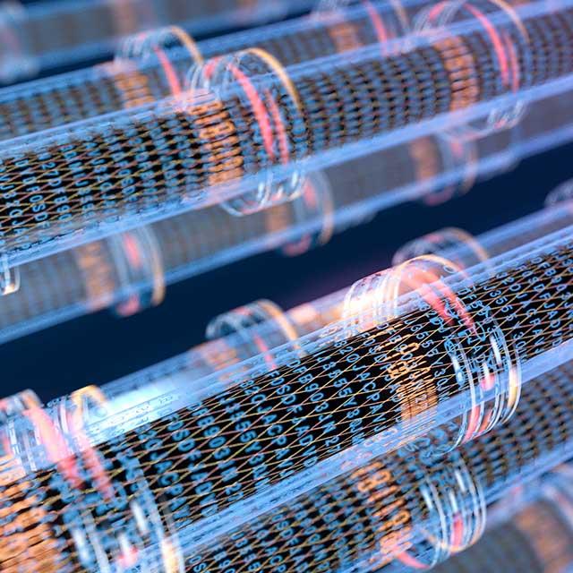 沈阳光纤宽带:骨干网向超100Gbit/s升级即将拉开序幕
