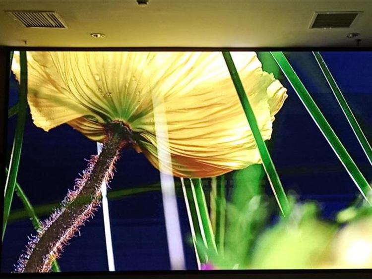 泉州安装led显示屏