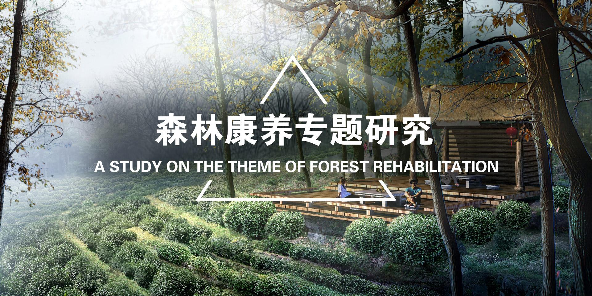 森林康养专题研究
