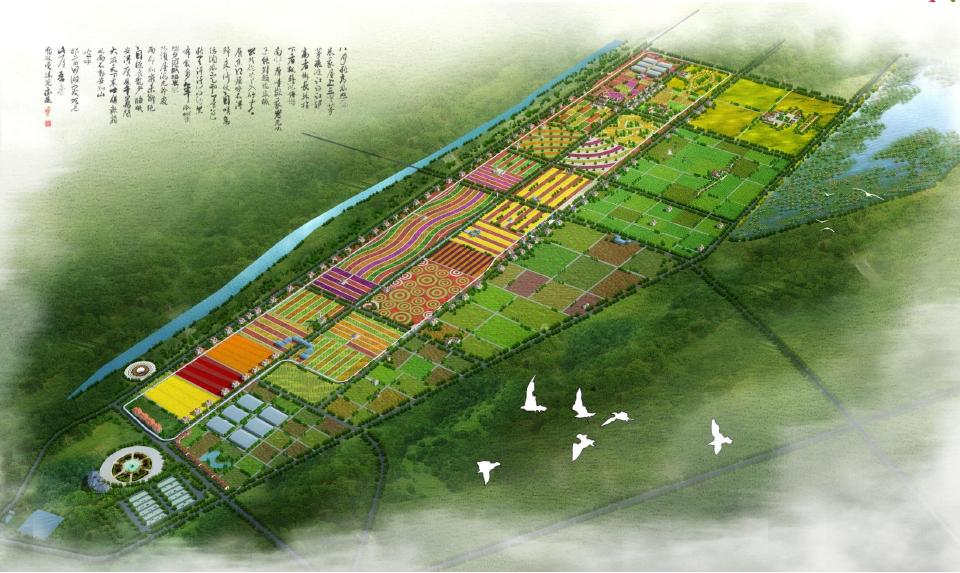 益阳南县罗文花海乡村振兴规划设计