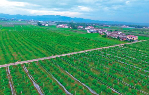 瀏陽市全域美麗鄉村示范點鄉村旅游規劃