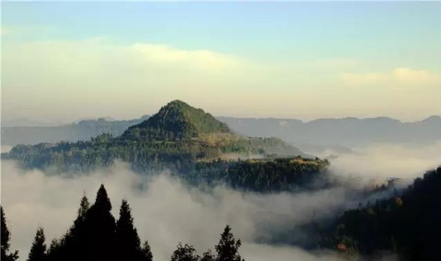 章怀山森林公园森林康养中福在线基地