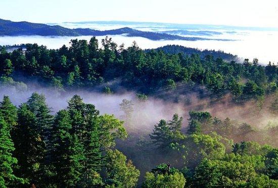湖南森林康养规划