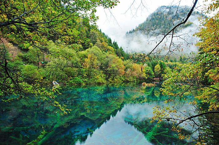 湖南林业森林康养中心(湘雅健康谷)项目