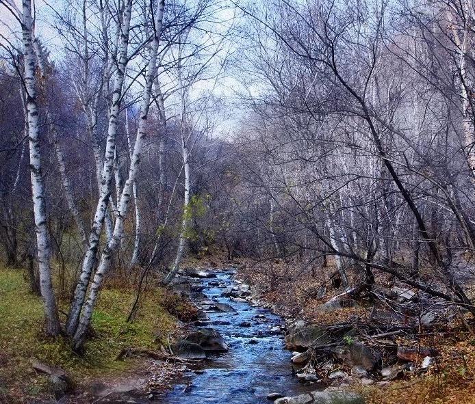 太岳山七里峪森林康养基地