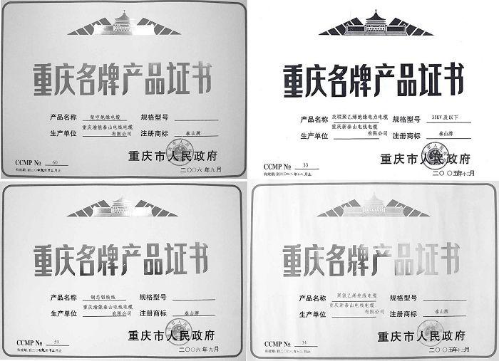 重慶名牌產品證書5