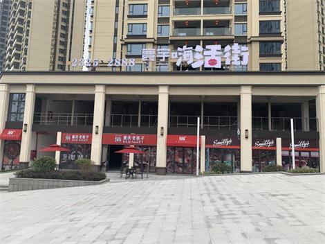 赤水寰宇江山商业街包装项目
