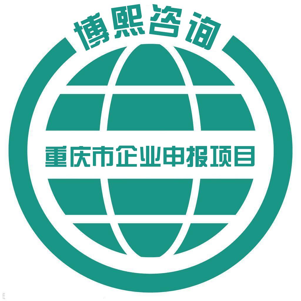 重庆市企业申报项目