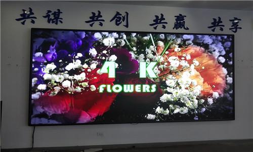 重庆云阳绿康食品有限公司室内P2显示屏