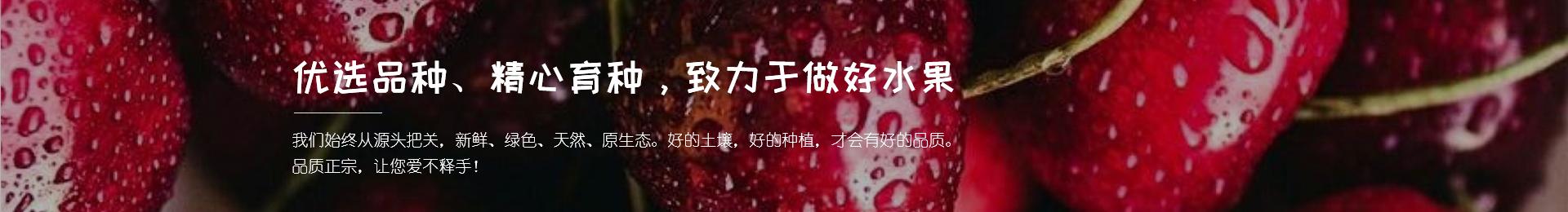 重庆江北草莓采摘基地