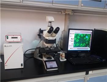 维修的徕卡DM6000B荧光显微镜