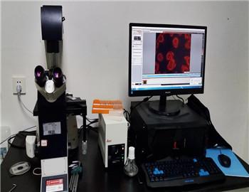 维修的徕卡倒置显微镜