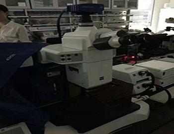 维修的蔡司V16宏观变倍体式荧光显微镜