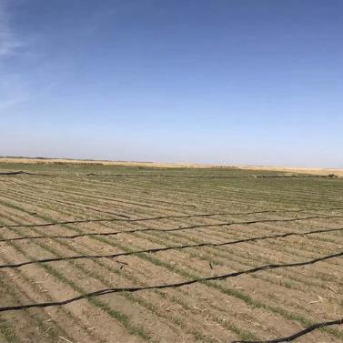 新疆某土壤beplay体育客户端下载项目