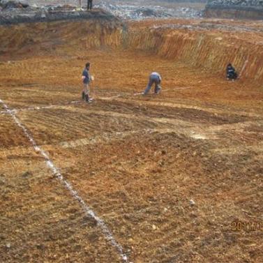 浙江杭州某污染场地环境调查及土壤beplay体育客户端下载