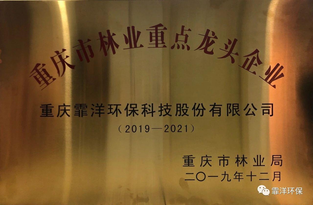 重庆市林业重点龙头企业!杠杠的霏洋!