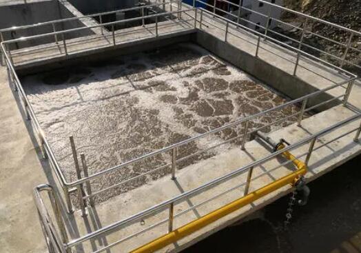 未处理的废水会对环境造成哪些危害