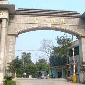 重庆南山龙园