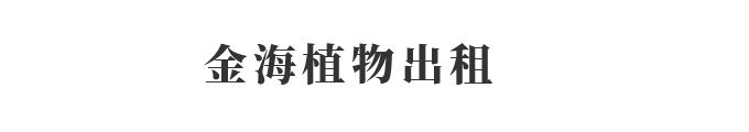 重庆金海植物租赁有限公司_Logo