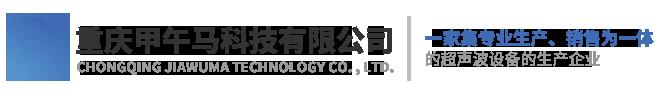 重庆甲午马科技有限公司