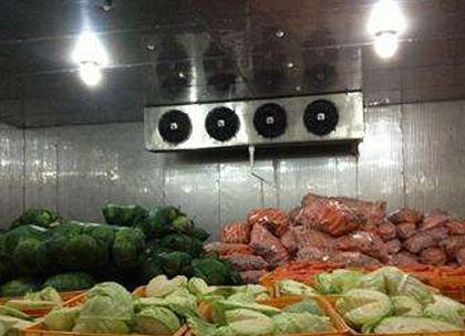 蔬菜保鲜冷库建造案例