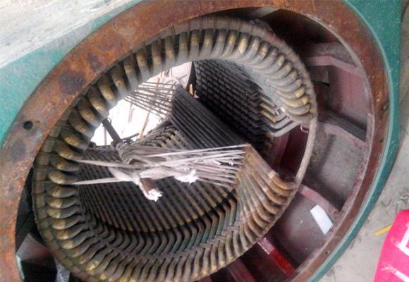 大型高压电机维护