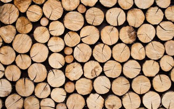 木材的主要特点是质轻不重,弹性好