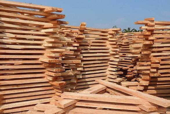 进口木材的鉴定方法和特点