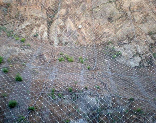 护坡网在防护的同时有什么绿化功能