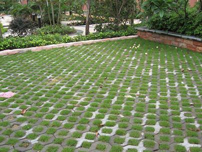 生態植草磚