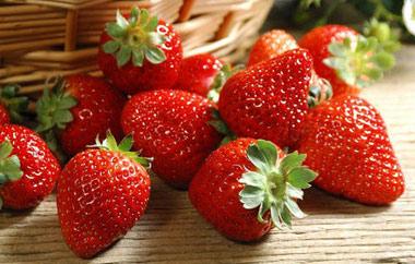 草莓采摘有着哪些乐趣