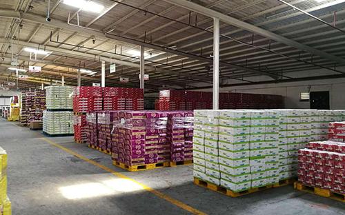 重庆商贸运输关于运输马铃薯的注意事项!
