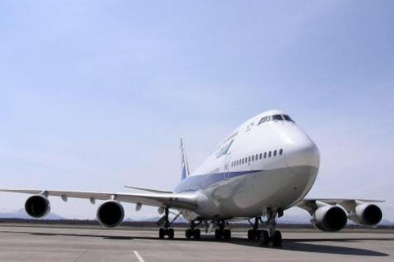 国际航协:呼吁各国政府确保空运物流道通畅