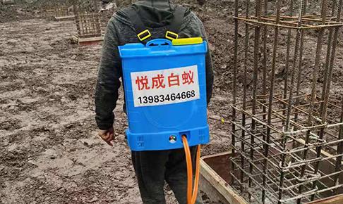 重庆新建楼盘白蚁防治