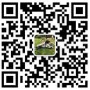 重庆防雷检测公司