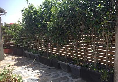 别墅庭院防腐木是如何进行防腐的