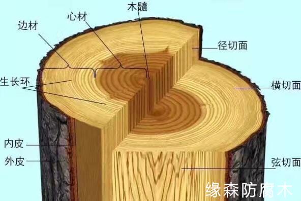 木材糜爛變形,畢竟若何?