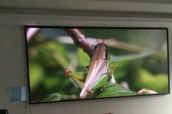重庆金沙澳门官网网址:灰度对LED显示屏的作用