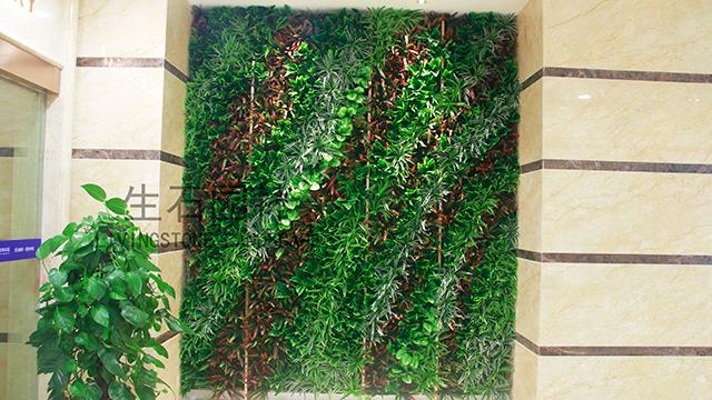 爱尔眼科仿真植物墙--其他仿真植物墙