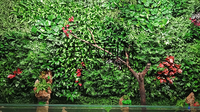 爱尔眼科生态植物墙