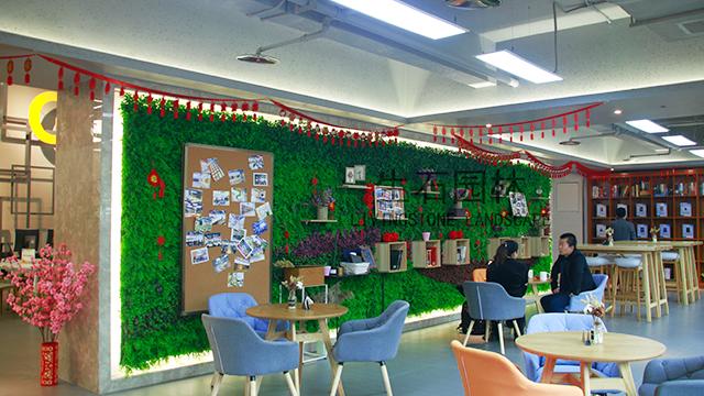 大学城创业中心植物墙