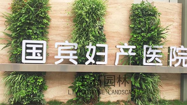 国宾医院生态垂直绿化-生态垂直绿化