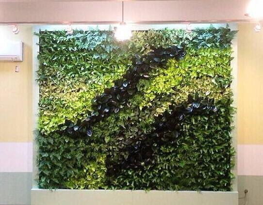 仿真植物墙是现代装饰发展的必然趋势